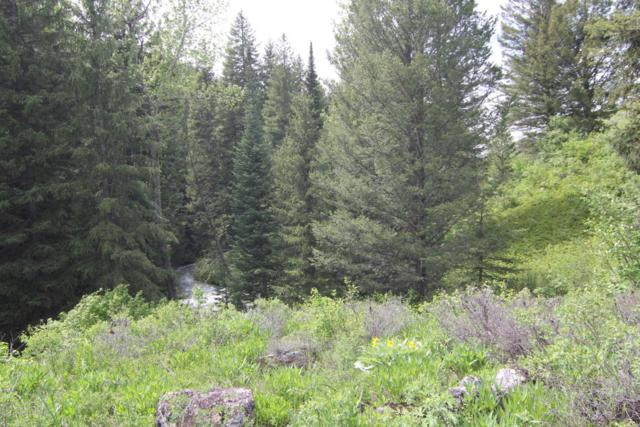 259 Creekside Ln, Victor, ID 83455 (MLS #17-2503) :: West Group Real Estate