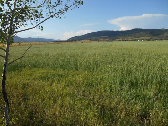Co  Rd 148 Smoot, Afton, WY 83110 (MLS #17-2511) :: Sage Realty Group