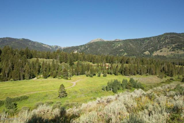 875 Cameron Rd, Wilson, WY 83014 (MLS #17-2526) :: Sage Realty Group