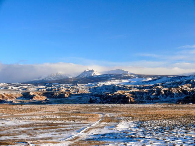 Flying Frog, Dubois, WY 82513 (MLS #17-278) :: West Group Real Estate