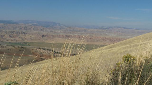 90 Hart Trl, Dubois, WY 82513 (MLS #17-2888) :: Sage Realty Group