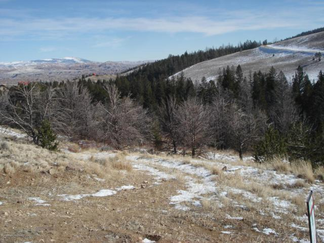 216 Soda Springs, Dubois, WY 82513 (MLS #17-3083) :: Sage Realty Group