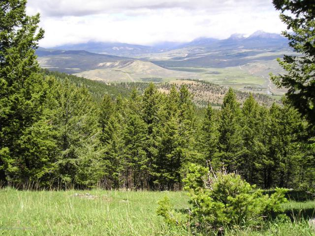 TBD LT 60A Pinion Ct, Dubois, WY 82513 (MLS #17-3242) :: Sage Realty Group