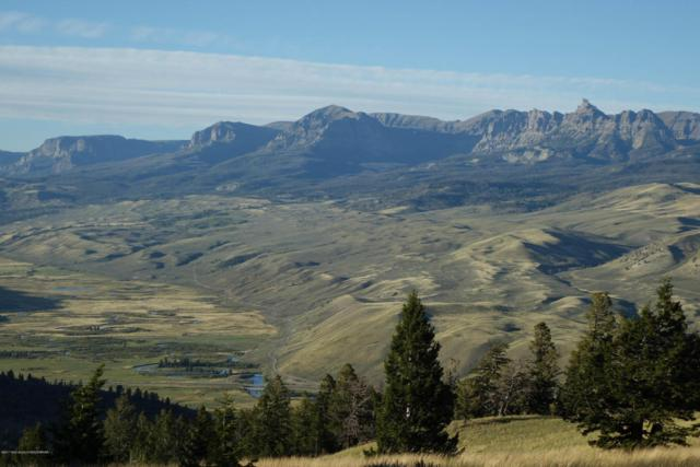 TBD TRAC 3 Starry Way, Dubois, WY 82513 (MLS #17-3243) :: West Group Real Estate