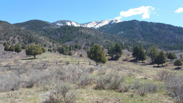 141 Elk Path Lot 3, Swan Valley, ID 83428 (MLS #17-796) :: West Group Real Estate