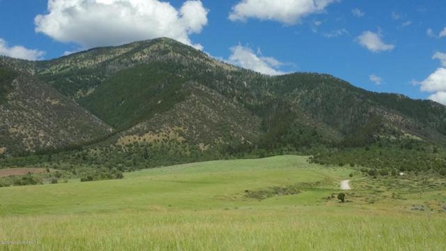 170 Elk Path Lot 12, Swan Valley, ID 83428 (MLS #17-896) :: West Group Real Estate