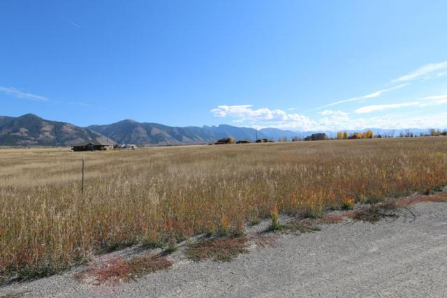 Address Not Published, Thayne, WY 83127 (MLS #18-1038) :: West Group Real Estate