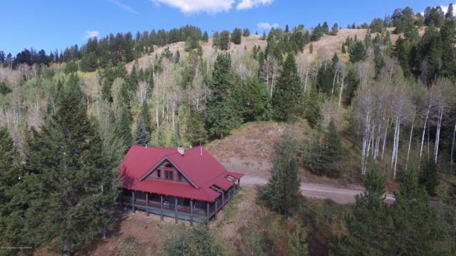 60 Deer Haven Rd, Bondurant, WY 82922 (MLS #18-1285) :: West Group Real Estate