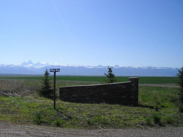 10155 Ditty, Tetonia, ID 83452 (MLS #18-1344) :: West Group Real Estate