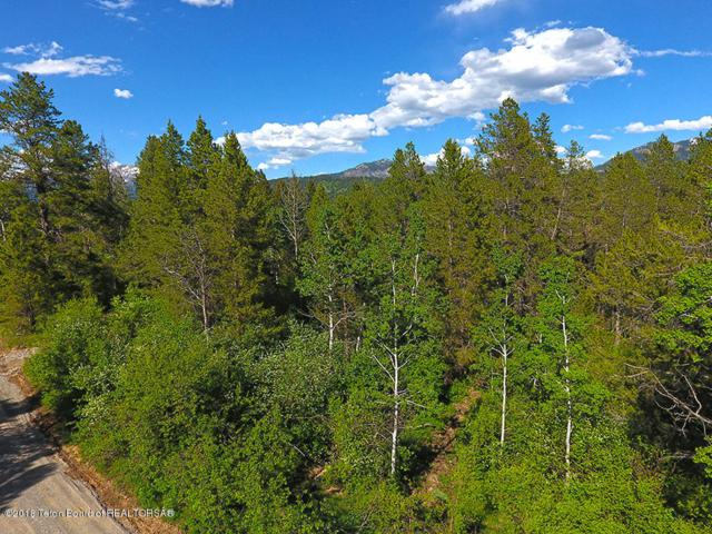 LOT #19 Alpine Meadow Loop, Alpine, WY 83128 (MLS #18-1394) :: West Group Real Estate
