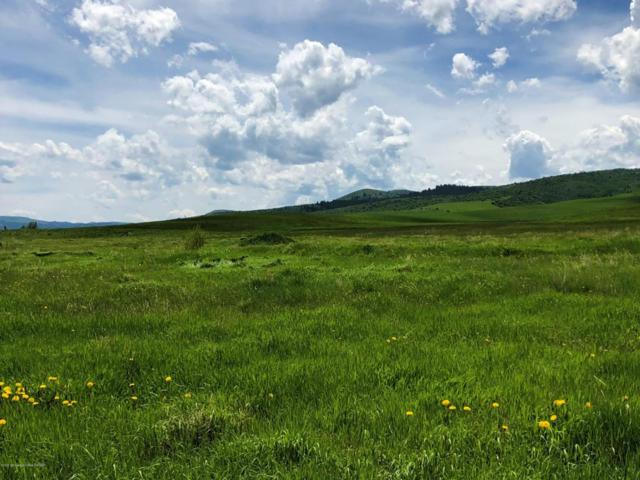 NYA Perry Ln, Afton, WY 83110 (MLS #18-1448) :: West Group Real Estate