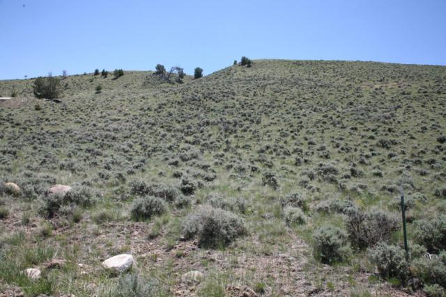 TBD LOT 4 Stoney Point Rd, Dubois, WY 82513 (MLS #18-1532) :: West Group Real Estate