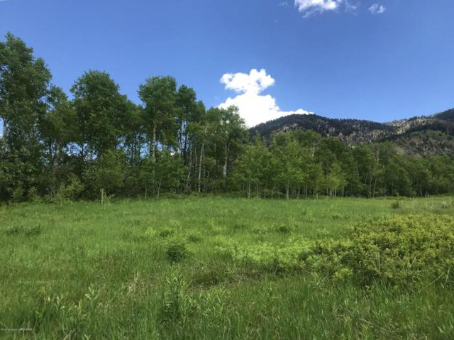 LOT 55 Aspen Way, Star Valley Ranch, WY 83127 (MLS #18-1695) :: West Group Real Estate