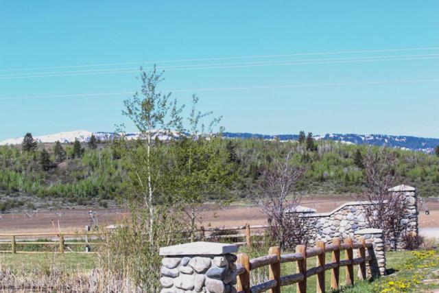6557 Horseshoe Meadow, Driggs, ID 83422 (MLS #18-1709) :: Sage Realty Group