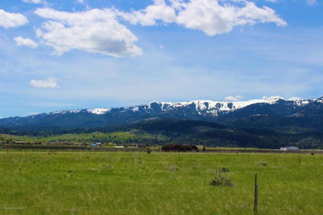 LOT 13 Aster Loop, Alpine, WY 83128 (MLS #18-192) :: Sage Realty Group