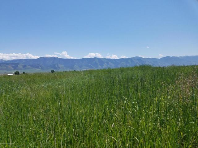 LOT 2 South Crown Ranch Road, Auburn, WY 83111 (MLS #18-1996) :: West Group Real Estate