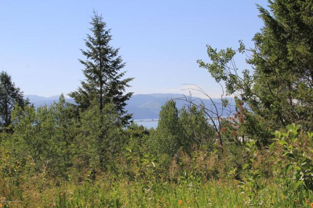 LOT 725 Lakeview Estates, Alpine, WY 83128 (MLS #18-2014) :: Sage Realty Group
