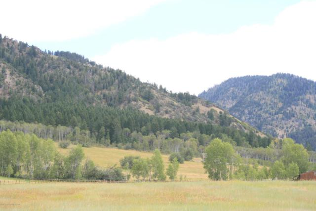 LOT 2 Alford Way, Thayne, WY 83127 (MLS #18-2144) :: Sage Realty Group