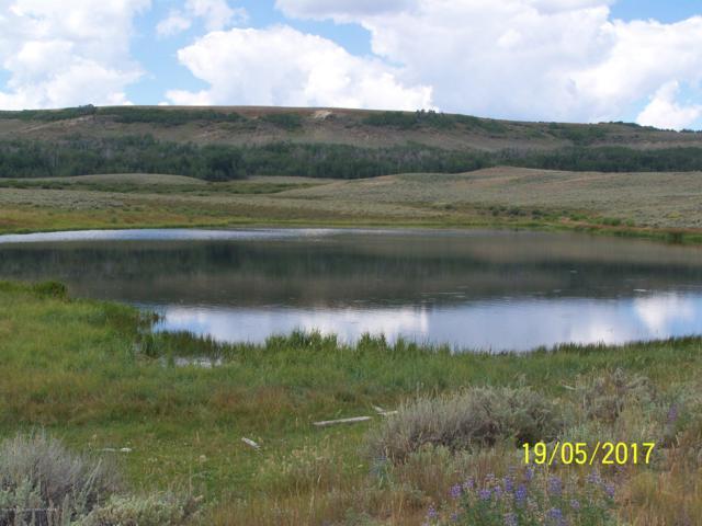 Elk Horn Road, Merna, WY 83115 (MLS #18-2725) :: Sage Realty Group