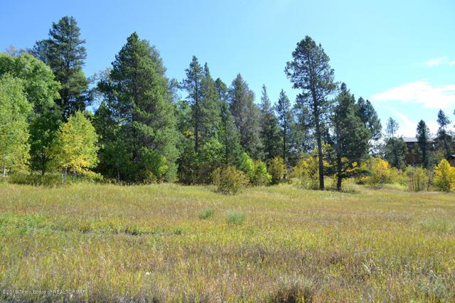 LOT 24 Aspen Ln, Alpine, WY 83128 (MLS #18-2733) :: Sage Realty Group