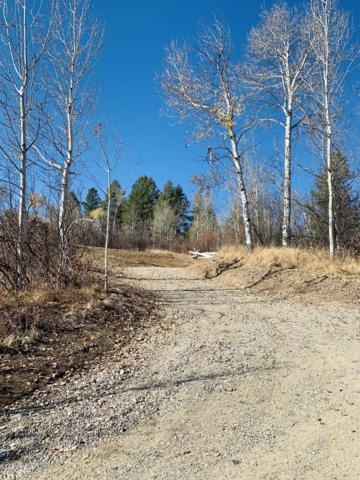 LOT 15 Alpine Meadow Loop, Alpine, WY 83128 (MLS #18-3001) :: Sage Realty Group