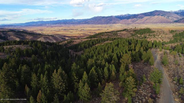160ACRES Spring Creek Ridge, Afton, WY 83110 (MLS #18-3006) :: Sage Realty Group