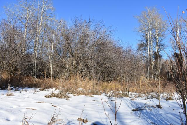 Address Not Published, Driggs, ID 83422 (MLS #18-3092) :: West Group Real Estate