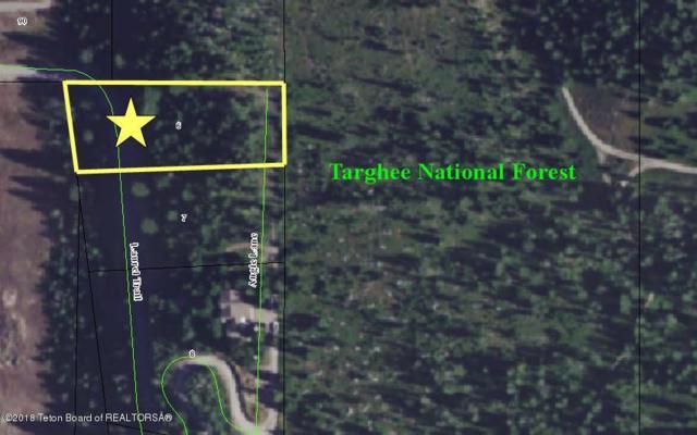 6 Angle Lane, Alpine, WY 83128 (MLS #18-3287) :: Sage Realty Group