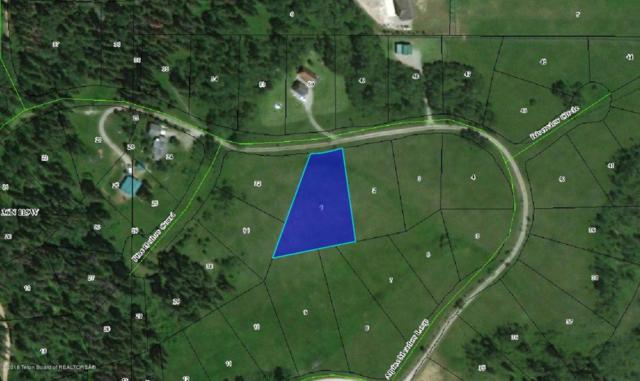 LOT 1 Alpine Retreat 2, Alpine, WY 83128 (MLS #18-369) :: Sage Realty Group
