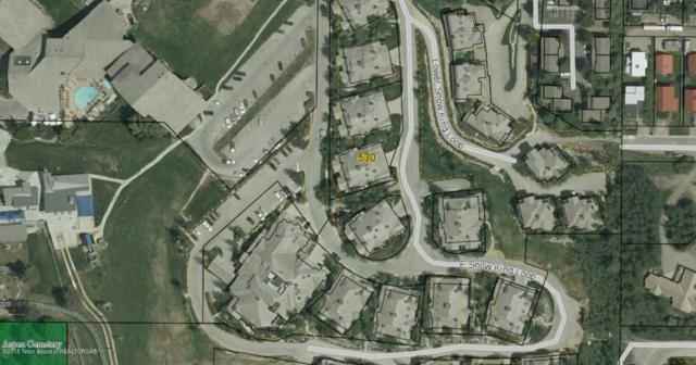 530 Snow King Loop #301, Jackson, WY 83001 (MLS #18-41) :: West Group Real Estate