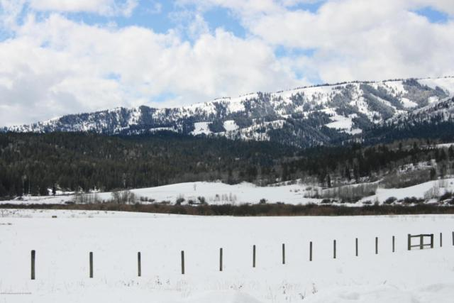 LOT 23 Fox Trail, Alpine, WY 83128 (MLS #18-599) :: West Group Real Estate