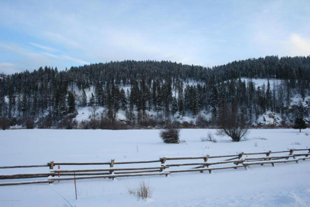 LOT52B4 Cutthroat Run, Irwin, ID 83428 (MLS #18-677) :: Sage Realty Group