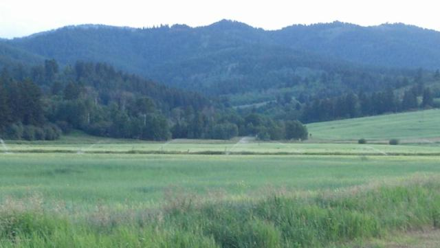 5000 W 5000 S, Driggs, ID 83422 (MLS #18-747) :: Sage Realty Group