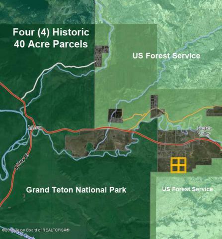 Gun Barrel Road, Moran, WY 83013 (MLS #18-806) :: Sage Realty Group