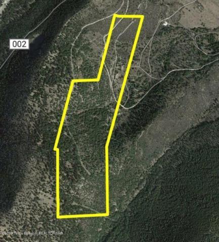103 Ac Meadow Lake Road, Gilmore, ID 83467 (MLS #18-999) :: Sage Realty Group