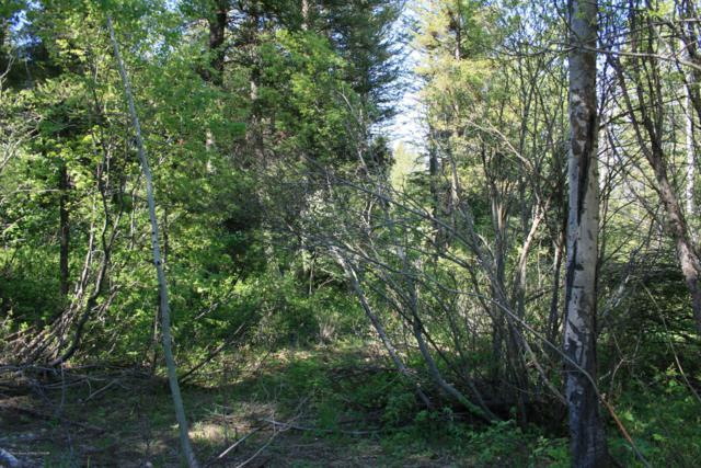 SVR PL8L38 Spurwood, Star Valley Ranch, WY 83127 (MLS #19-1027) :: Sage Realty Group