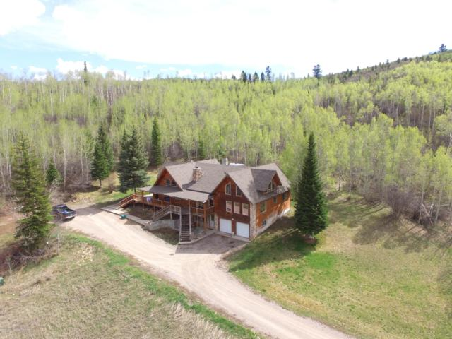 637 Richardson Creek Dr, Afton, WY 83110 (MLS #19-1148) :: Sage Realty Group