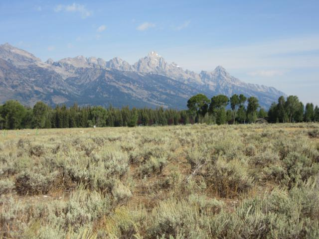 550 E Solitude Drive, Jackson, WY 83001 (MLS #19-1261) :: The Group Real Estate