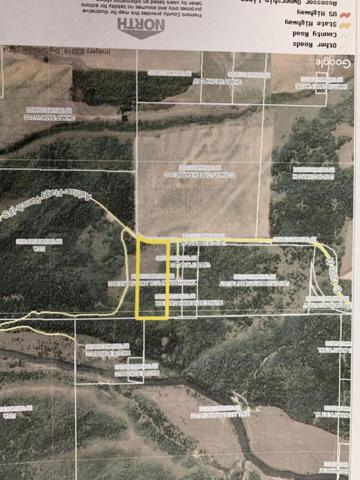 4800 Reclamation Rd, Ashton, ID 83420 (MLS #19-1490) :: Sage Realty Group