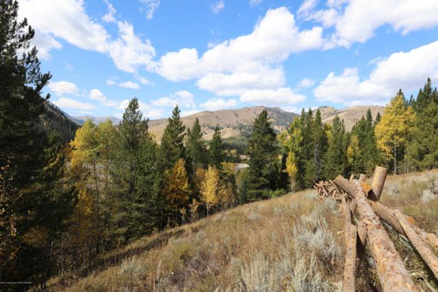 LOT 06 Man Peak Loop, Alpine, WY 83128 (MLS #19-1706) :: Sage Realty Group