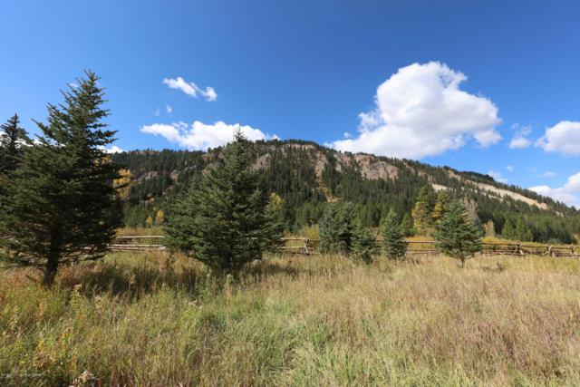 LOT 18 Man Peak Loop, Alpine, WY 83128 (MLS #19-1708) :: Sage Realty Group