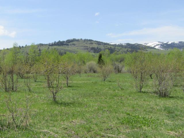 Address Not Published, Victor, ID 83455 (MLS #19-1720) :: Sage Realty Group