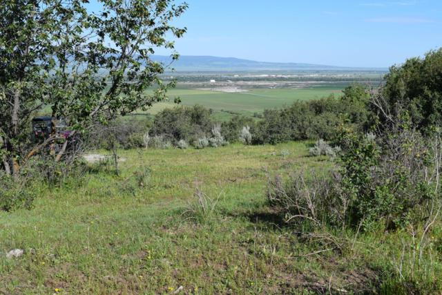 05-000600 South State Line Road, Alta, WY 83414 (MLS #19-1740) :: Sage Realty Group