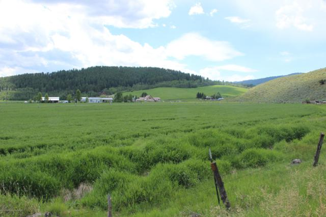 LOT 3 County Road 125, Freedom, WY 83120 (MLS #19-1818) :: Sage Realty Group