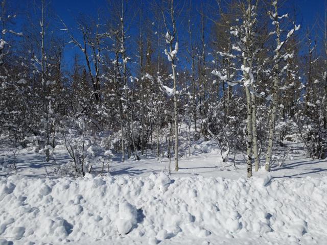 2604 Apsaroke Trail, Tetonia, ID 83452 (MLS #19-205) :: Sage Realty Group