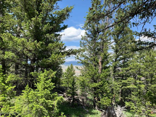 LOT 60A Pinion Court, Dubois, WY 82513 (MLS #19-2072) :: Sage Realty Group