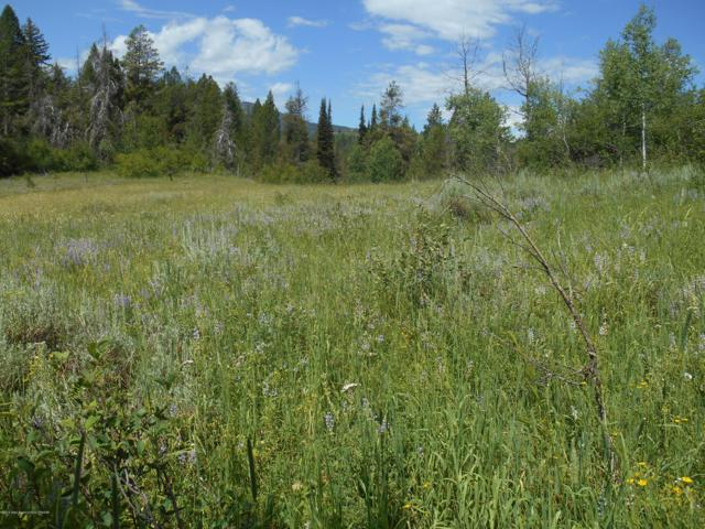 Lot 4 Solitude Circle, Alpine, WY 83128 (MLS #19-2320) :: West Group Real Estate