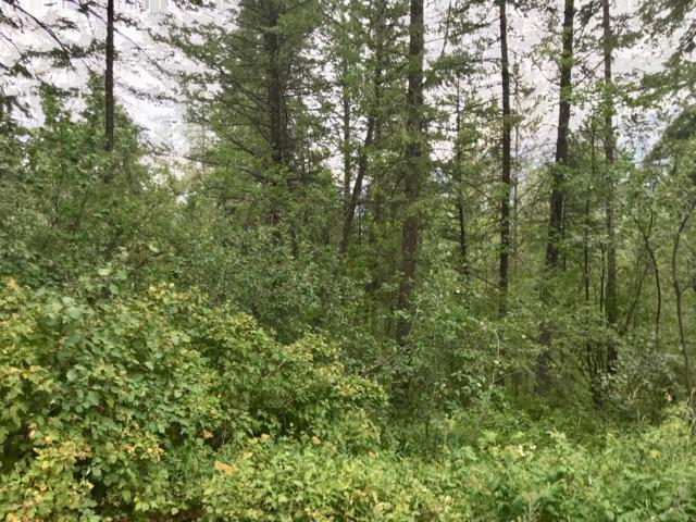 LOT 840 Sunset Dr, Alpine, WY 83128 (MLS #19-2321) :: West Group Real Estate