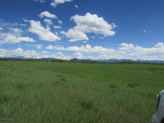 530 Leafcutter, Tetonia, ID 83452 (MLS #19-2342) :: Sage Realty Group