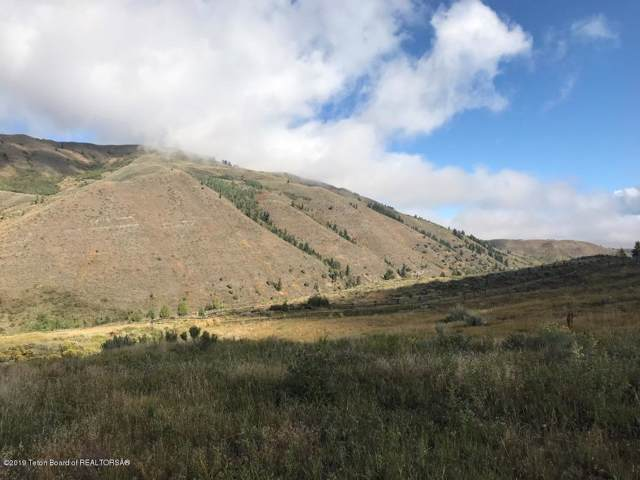 10600 S Highway 89 Parcel B, Jackson, WY 83001 (MLS #19-2645) :: Sage Realty Group